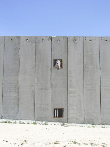 Bansky's painting on Israel's segregation barrier. Credits PatientBoy / Flickr