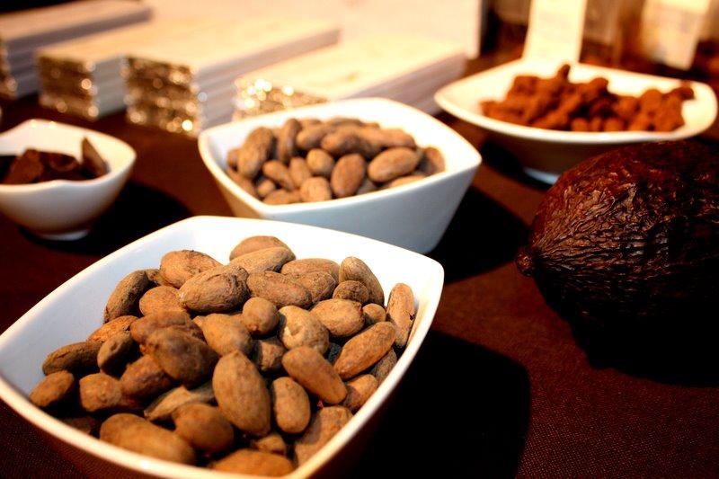 Chocolate Naive products. Credits Emilia Temirkulovaite