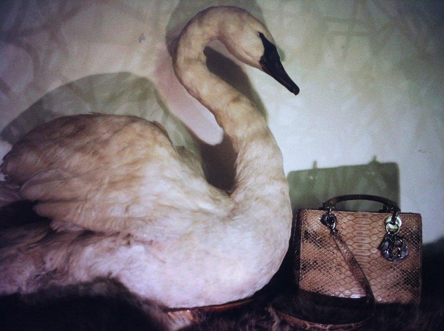Lady Dior Bag as seen by Nan Goldin. Credits Vaida K.