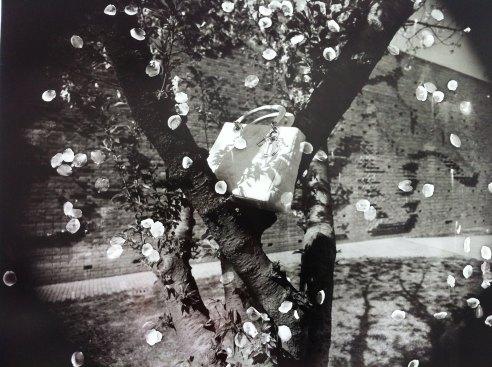 Lady Dior Bag as seen by Rongrong & Inri. Credits Vaida K.